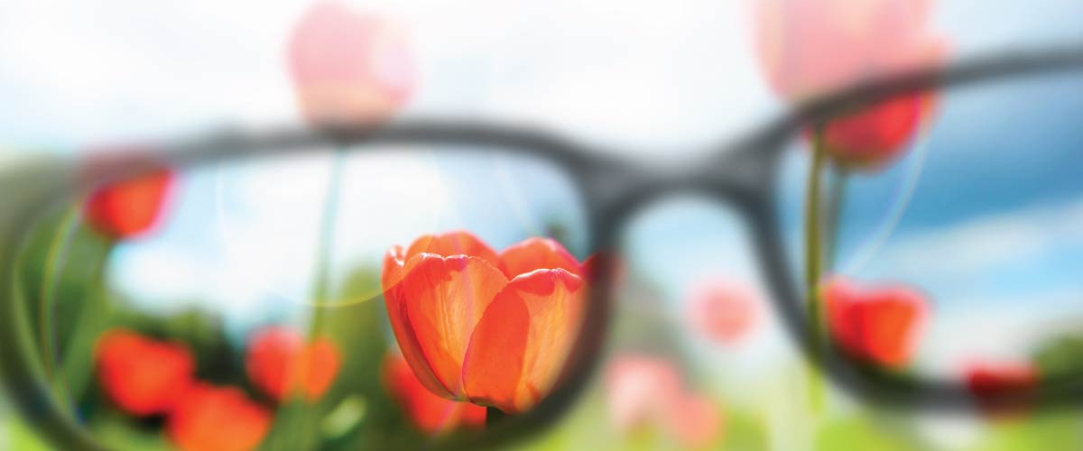 get the right focus at Klauer Optical